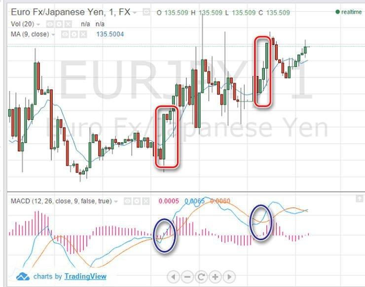 Huntraders   Stock, Option & Forex Education for Beginners!